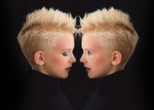 ego twins